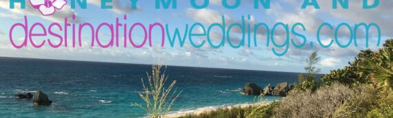 All About Bermuda